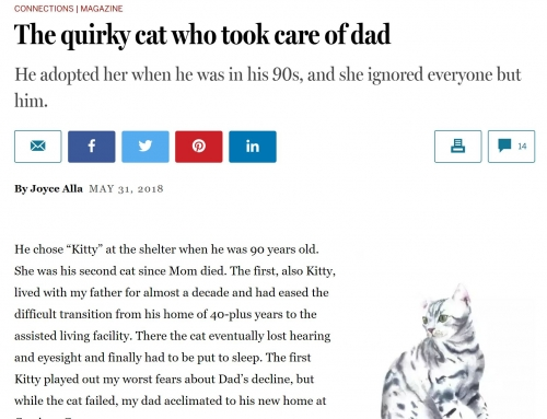 The quirky cat who took care of dad